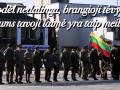 Lietuvos nepriklausomybes simtmecio link (12)