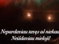Lietuvos nepriklausomybes simtmecio link (19)