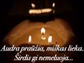Lietuvos nepriklausomybes simtmecio link (20)