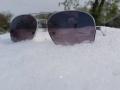 Sniegas-ant-zydinciu-obelu-4